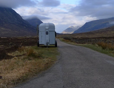 The Horsebox
