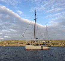 Kirsty: boat news